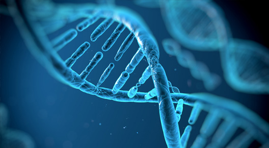 Pharma-Biotech